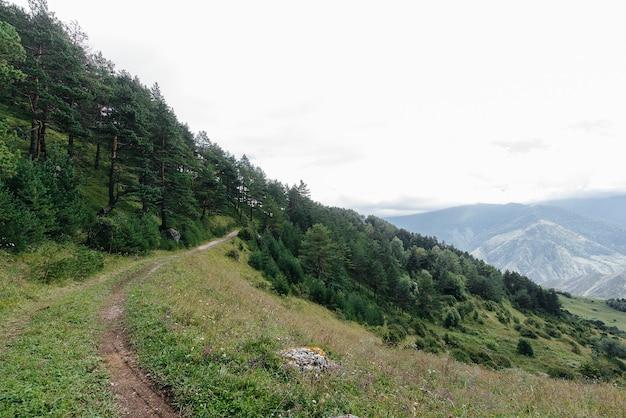 Belas montanhas e vida selvagem ao seu redor em um dia ensolarado.