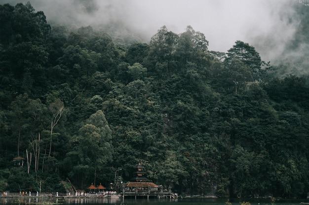 Belas paisagens da floresta coberta de nevoeiro perto do belo lago com edifícios