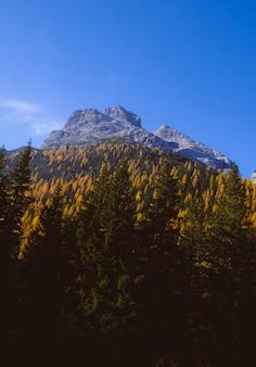 Belas paisagens de altas montanhas rochosas, rodeadas por árvores verdes