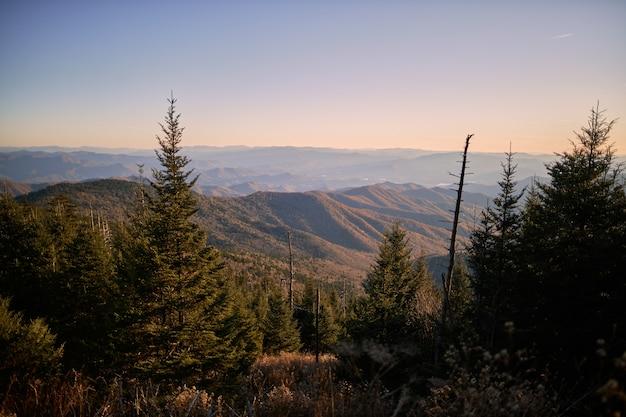 Belas paisagens de pinheiros com altas montanhas rochosas