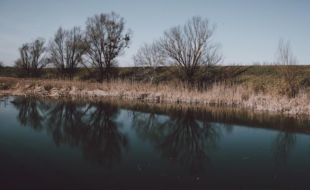 Belas paisagens de um lago com o reflexo das árvores sem folhas