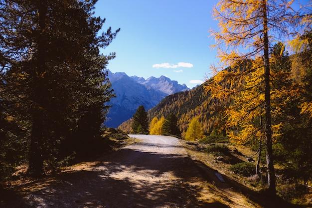 Belas paisagens de uma estrada cercada por belas árvores com altas montanhas