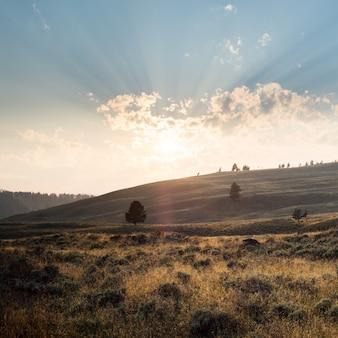 Belas paisagens de uma paisagem em yellowstone, com montanhas e o nascer do sol