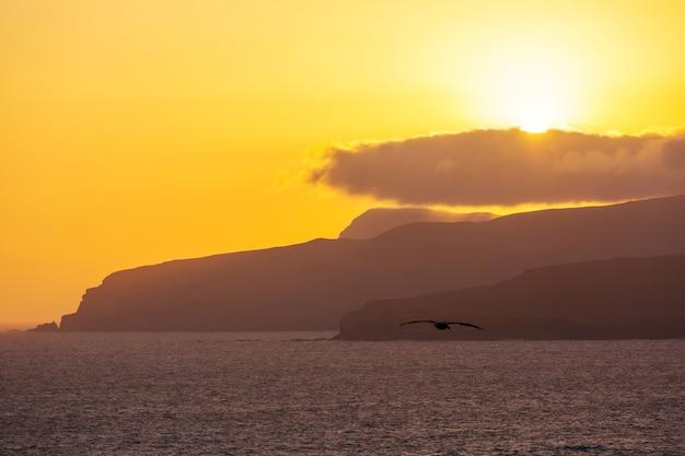 Belas paisagens do litoral na reserva nacional de paracas, região de ica, costa do pacífico do peru.
