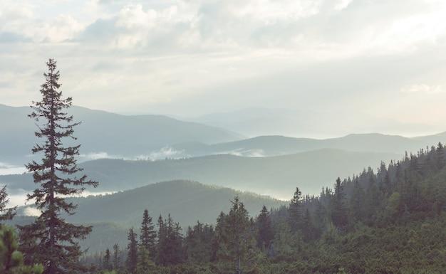 Belas paisagens naturais nas montanhas dos cárpatos