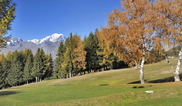 Belas paisagens outonais na montanha alpina com fundo branco do mont blanc
