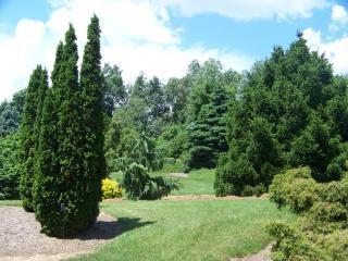 Beleza natural do lago escondido jardins, gramados, árvores