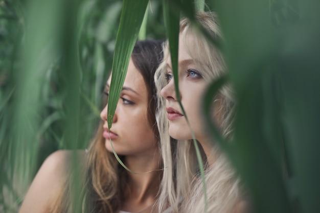 Belezas jovens naturais