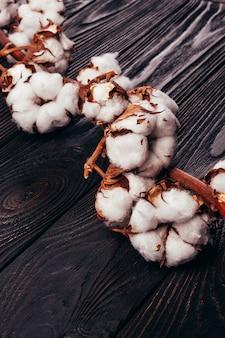 Belo algodão em um fundo de madeira