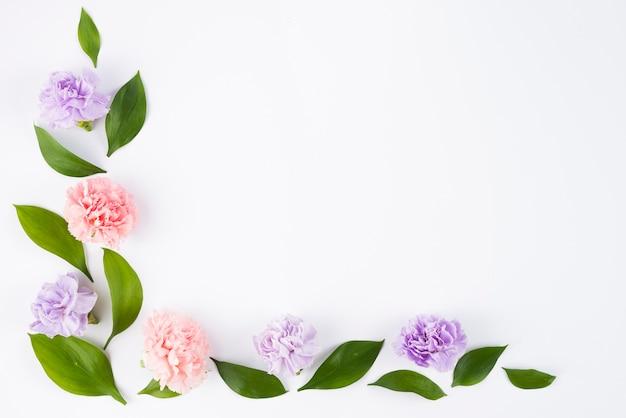 Belo ângulo com flores e folhas