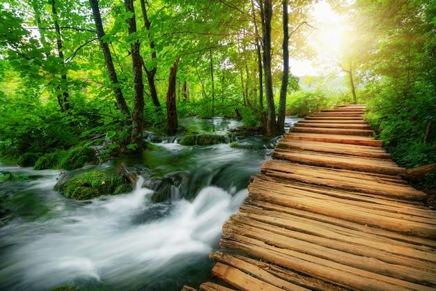 Belo caminho de madeira no lago plitvice, croácia