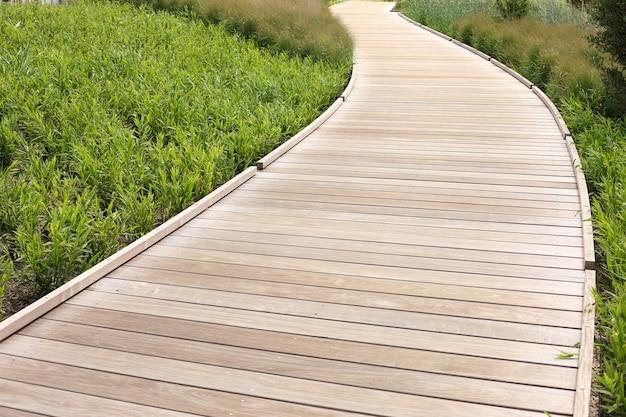 Belo caminho de madeira sobre grama e plantas verdes