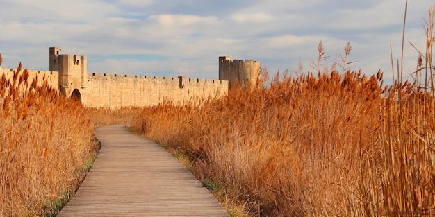 Belo caminho indo para um castelo cercado por um belo campo