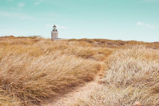 Belo campo com vegetação seca e uma torre de farol farol à distância sob um céu azul