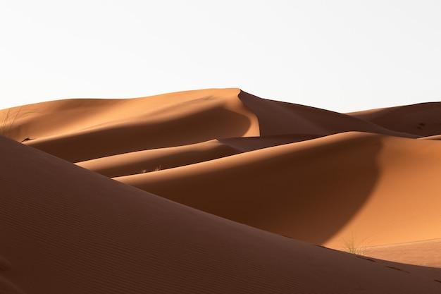 Belo cenário de dunas de areia em uma área deserta em um dia ensolarado