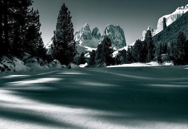 Belo cenário de uma área nevada cercada por muitos penhascos rochosos e abetos nas dolomitas
