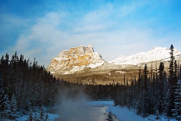 Belo cenário de uma área nevada com muitas árvores verdes cercada por altas montanhas rochosas