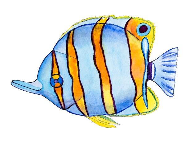 Belo desenho de peixes brilhantes. quadro pintado com aquarela. fechar-se