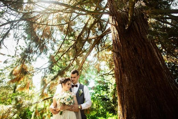 Belo dia de sol. casal de noivos posando no fundo da natureza