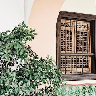 Belo edifício antigo com arco, janela e grande verde exuberante