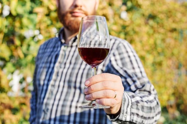 Belo fabricante de vinhos segurando uma taça de vinho tinto e provando-o, verificando a qualidade do vinho enquanto está no vinhedo