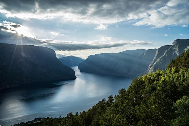 Belo fiorde na noruega. visão do topo.