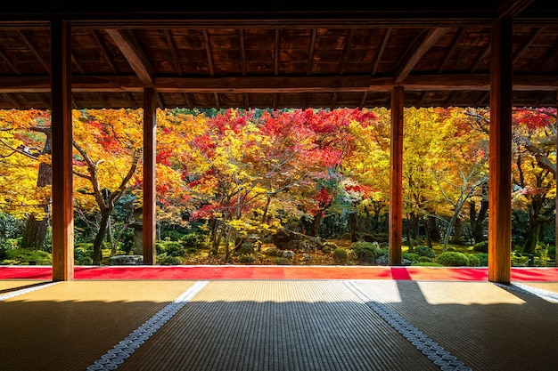 Belo jardim no outono no templo enkoji, kyoto, japão.