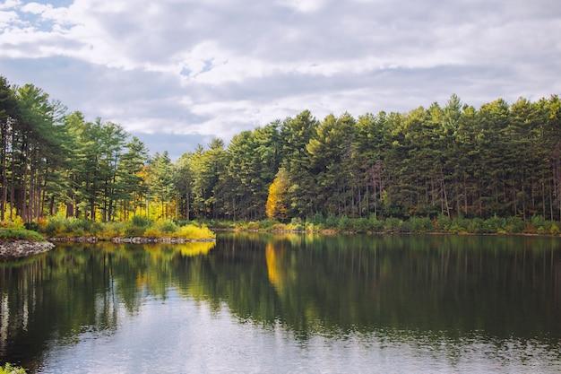 Belo lago em uma floresta com reflexos de árvores na água e no céu nublado