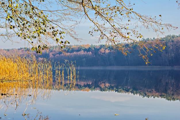 Belo lago no outono com reflexo das árvores e do céu na água Foto Premium
