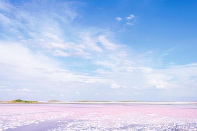 Belo lago rosa, bela vista da paisagem.