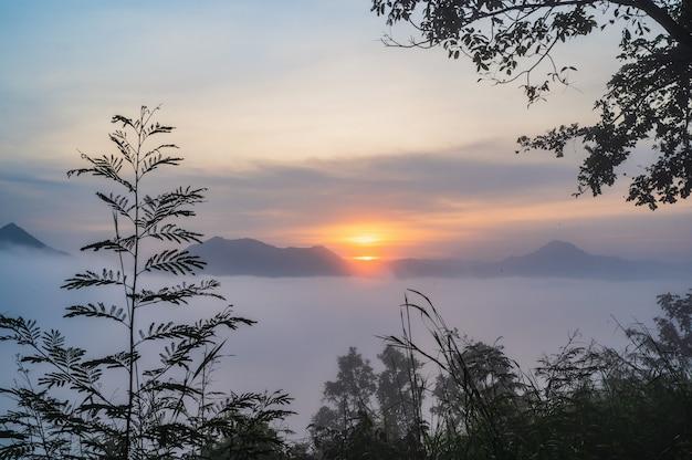 Belo nascer do sol com mar de nevoeiro nas primeiras horas da manhã na cidade de leoi do distrito de phu thok chiang khan, tailândia.
