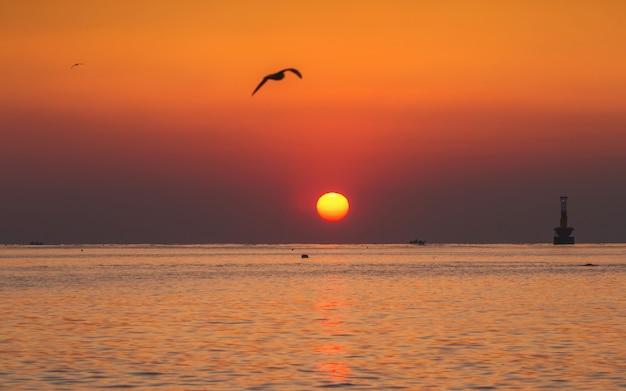 Belo nascer do sol na praia de haeundae, busan, coréia do sul.