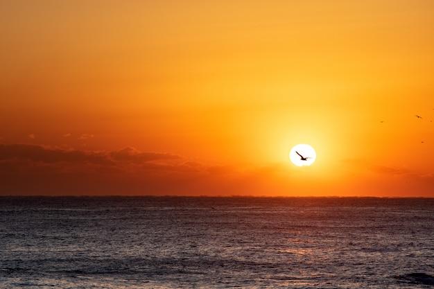 Belo nascer do sol sobre o oceano,
