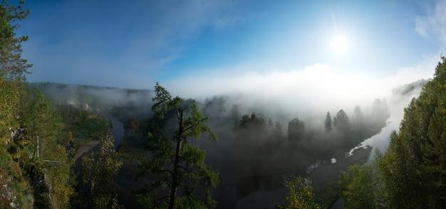 Belo panorama de uma manhã ensolarada no parque nacional de córregos de veados