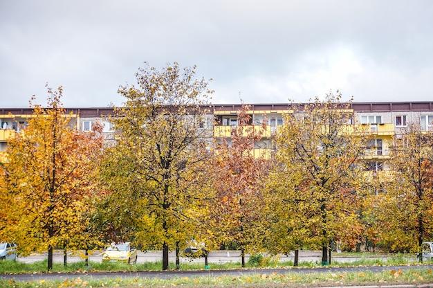 Belo parque com árvores coloridas de outono e folhas secas sob um céu nublado