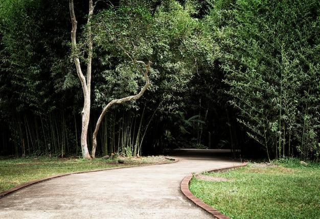 Belo parque com árvores e beco