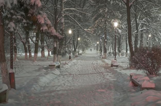 Belo parque da cidade durante uma forte nevasca com muita neve