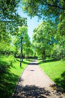 Belo parque da cidade