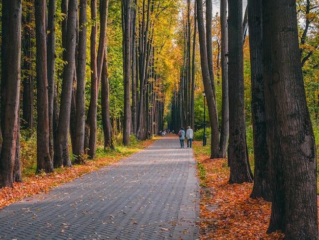 Belo parque de outono com silhuetas de pessoas caminhando. moscou.