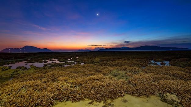 Belo pôr do sol ou paisagem do nascer do sol nuvem incrível na luz do nascer do sol acima do recife de coral no mar de rawai phuket corais de maré baixa severa crescendo em águas rasas. coral staghorn.