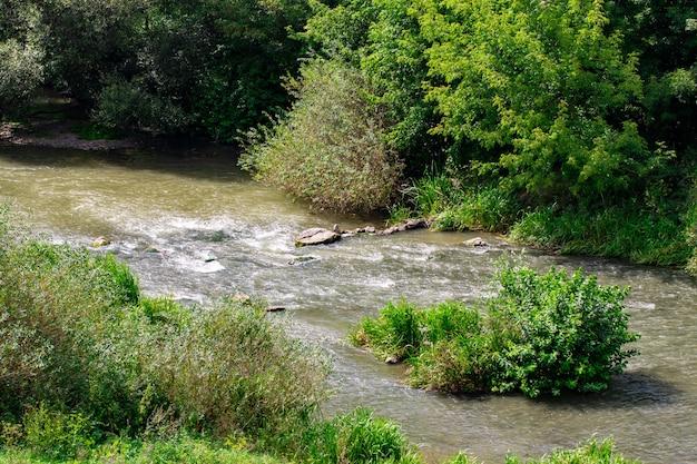 Belo rio com pedras no verão em um dia ensolarado.