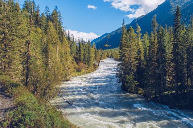Belo rio de montanha fluindo