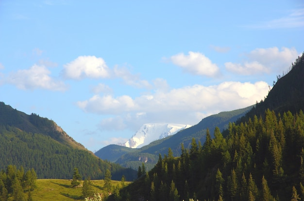 Belo vale da montanha altai