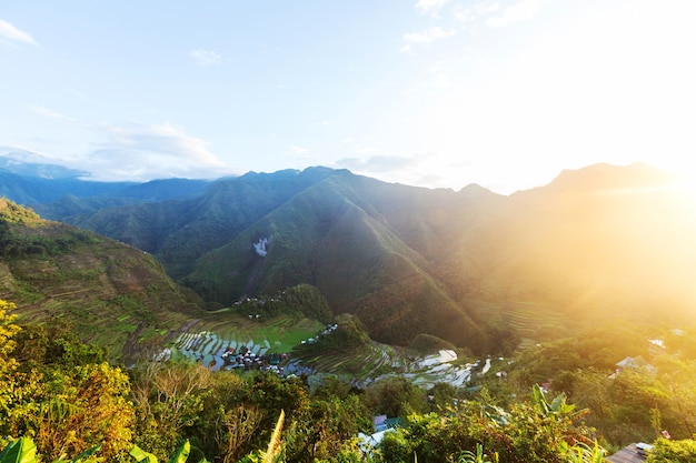 Belos terraços de arroz verde nas filipinas. cultivo de arroz na ilha de luzon.