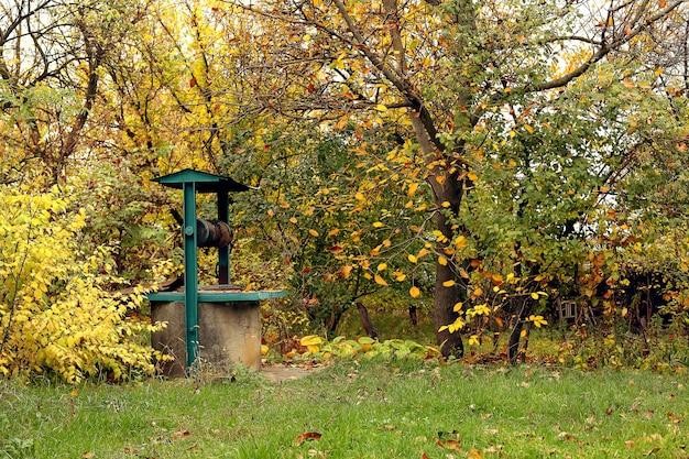 Bem na vila entre folhas de outono amarelas.