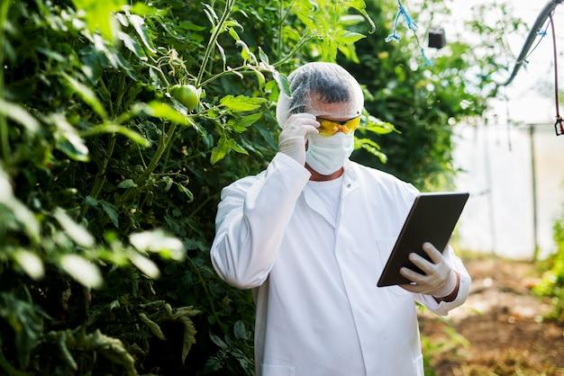 Bem sucedido jovem agricultor com máscara facial e outra proteção segurando o tablet na estufa.