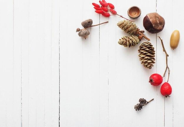 Berriaes vermelhos e cones em fundo branco de madeira
