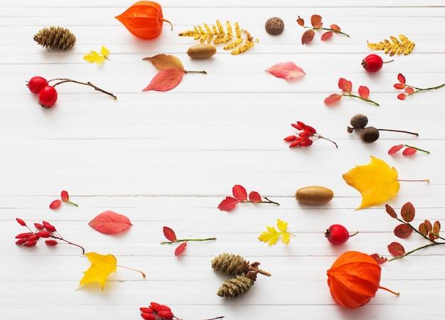 Berriaes vermelhos e folhas de outono em fundo branco de madeira