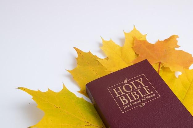 Bíblia sagrada com folhas amarelas de outono em fundo branco