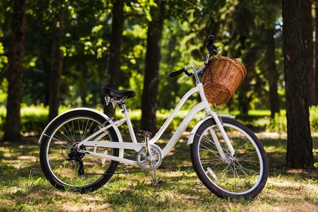 Bicicleta branca no chão da floresta